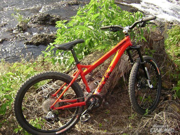 whole_bike